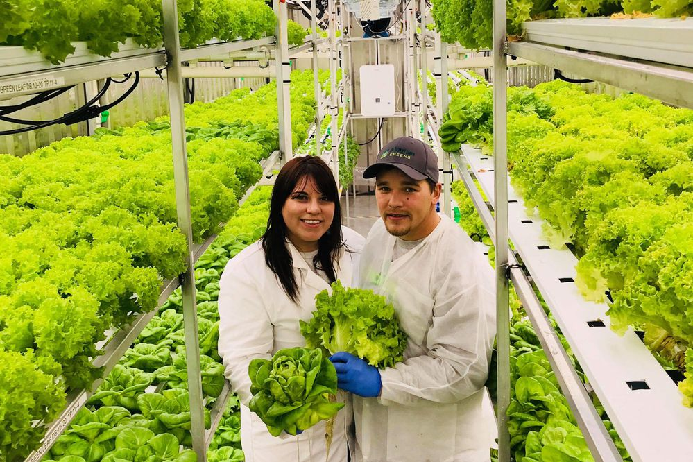 Co-owners of Aleutian Greens, Catina and Blaine Shaishnikoff hold newly-harvested produce Saturday, Nov. 25, 2017. (Photo provided by Aleutian Greens)