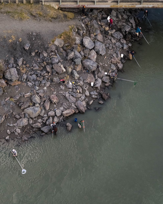 People fish for hooligan Tuesday at Twentymile River. (Loren Holmes / ADN)