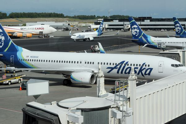 Alaska Airlines passenger jets at Ted Stevens Anchorage International Airport on Monday, June 22, 2020. (Bill Roth / ADN)