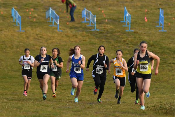 The girls start the D3 Alaska state cross country high school race at Kincaid Park in Anchorage, AK on Saturday, October 10, 2020. Bob Hallinen)