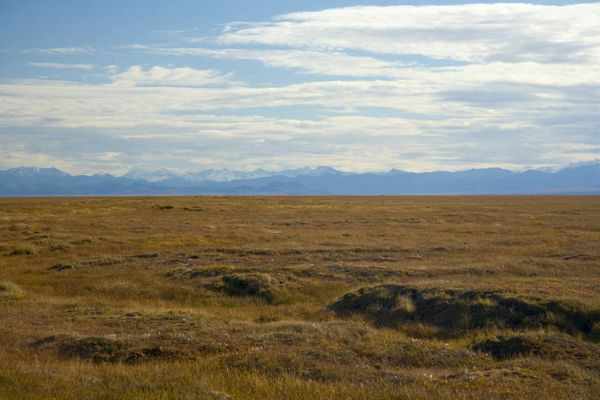 A remote grassland area at Arctic National Wildlife Refuge. (Photo by Steve Hillebrand / US Fish and Wildlife Service)