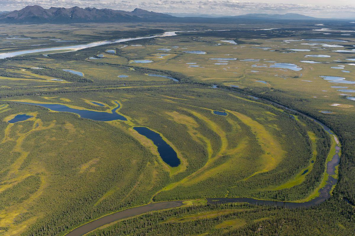 Wetlands along the Kobuk River in Kobuk Valley National Park. (National Park Service photo by Neal Herbert)