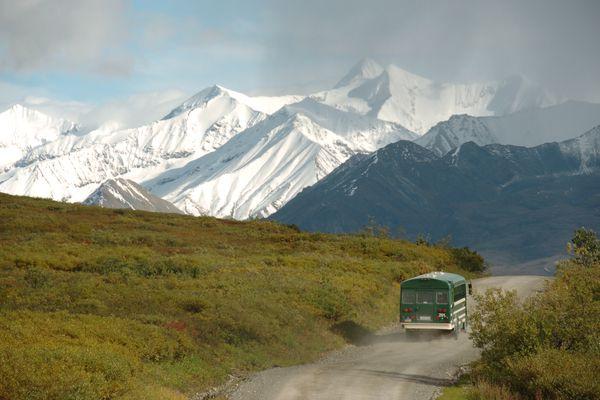 A tour bus motors down the park road in Denali National Park on Aug.22, 2006. (Bob Hallinen /ADN)
