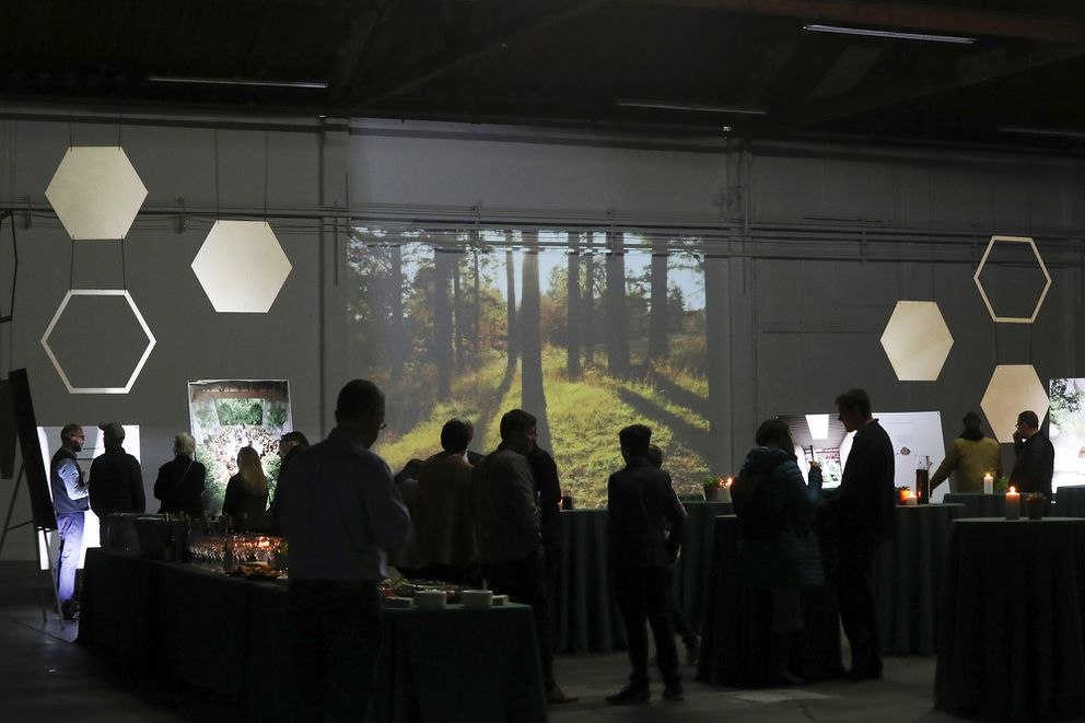 Nature scenes are projected on the wall at the Recompose official launch event in November 2019. (Ken Lambert/Seattle Times/TNS)