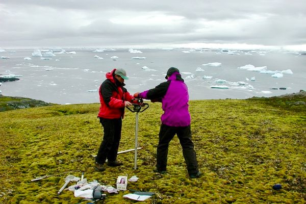 Peter Convey, an ecologist with the British Antarctic Survey, takes samples of moss with his research team in Antarctica. (P. Boelen/BAS)