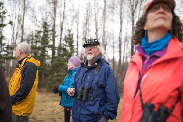 Mr. Whitekeys, president of Anchorage Audubon, leads an early morning bird walk at Campbell Tract Thursday, May 10, 2018. (Loren Holmes / ADN)