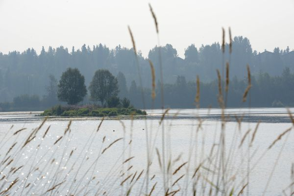 Anchorage has an unhealthy amount of smoke in the air from the Swan Lake fire, Aug. 23, 2019. Westchester Lagoon (Anne Raup / ADN)