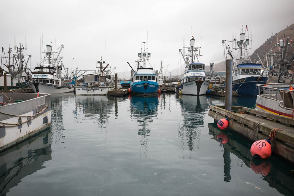 Fishing boats are docked at Kodiak's St. Paul Harbor on Thursday, Jan. 24, 2019. (Loren Holmes / ADN)