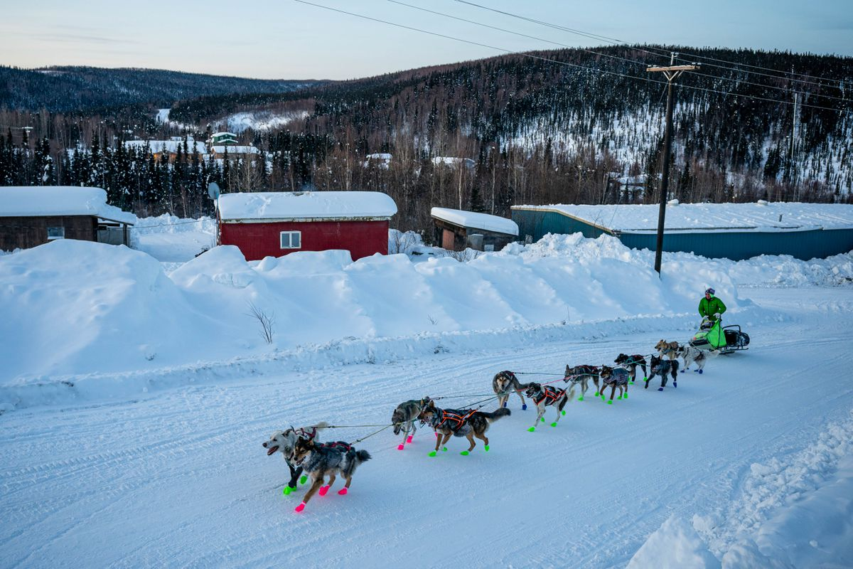 Ryan Redington arrives in Ruby on Friday morning during the Iditarod Trail Sled Dog Race. (Loren Holmes / ADN)