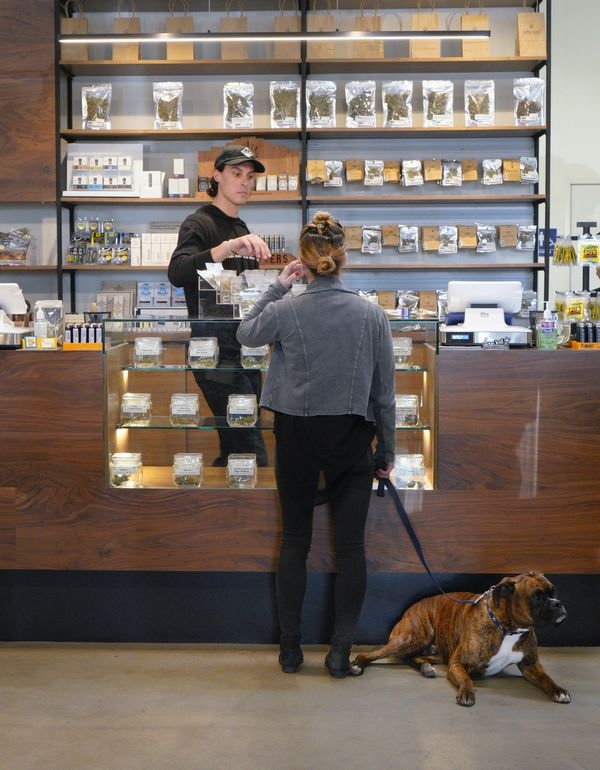 Sam Veenkant and Brody stop at Urbn Leaf to take advantage of the legal use for recreational marijuana in San Diego, Calif. (Nelvin C. Cepeda/San Diego Union-Tribune/TNS)