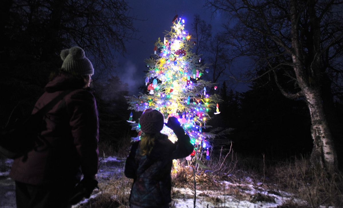People walk the Mize Loop at Kincaid Park to view 30 trees that were decorated for Nordic Skiing Association of Anchorage's Solstice Tree Tour on Dec. 17, 2017. Local businesses sponsor trees for the unique celebration of winter solstice and the return of longer days. (Bill Roth / ADN archive)