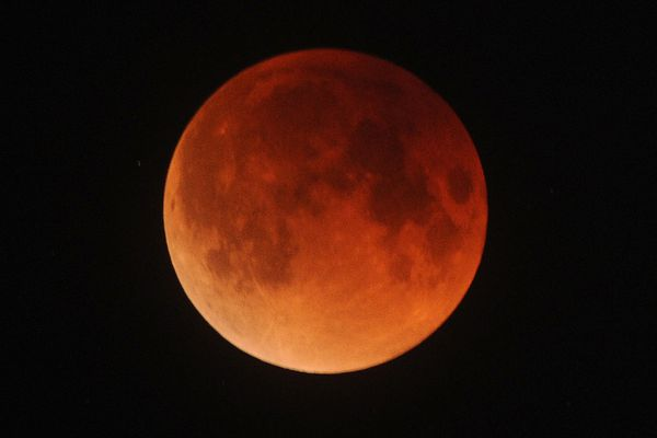 Super blue blood moon over Anchorage on Wednesday morning, Jan. 31, 2018. (Bill Roth / ADN)