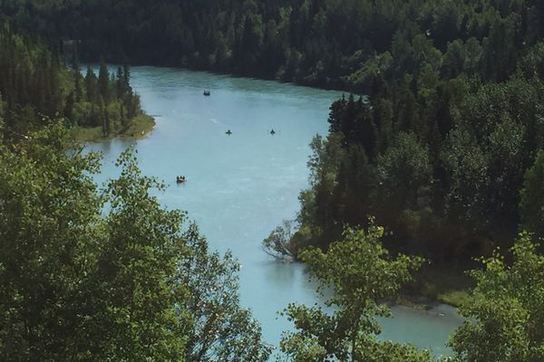 Fishers drift down the Kenai River near Cooper Landing Monday, June 22, 2015. Many guide services use the boats to access different parts of the river, drifting between the many gravel bars between Kenai and Skilak Lake. (Erik Hill / ADN)