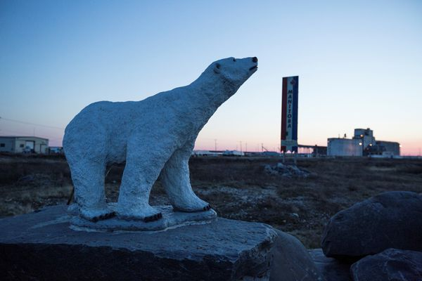 Signs by the Churchill mill in Churchill, Canada, June 14, 2014. Less Arctic ice coverage means more encounters between bears and human communities. A WWF-Canada program is aiming to make those encounters less likely to be lethal.