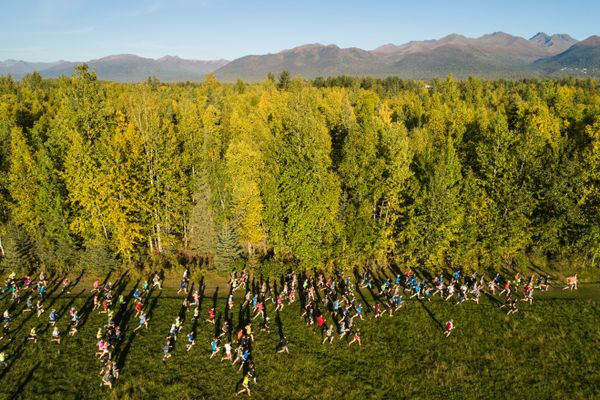 Runners take off from a field at Alaska Pacific University during the Bonny Sosa Tuesday Night Races Tuesday, Sept. 11, 2018. This year marks the 50th anniversary of the race series, which was started by Jim Mahaffey to give his Alaska Methodist University (now Alaska Pacific University) skiers dry land training opportunities. (Loren Holmes / ADN)