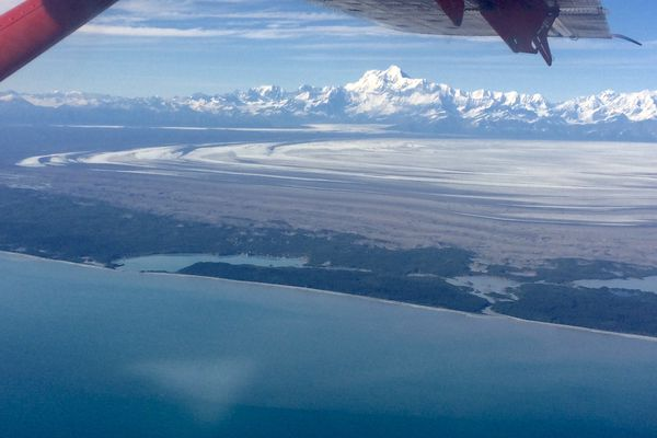 Taking up as much space as Rhode Island, Malaspina Glacier spills onto flats near the Gulf of Alaska. Photo taken during a glacier-measuring mission. (Photo by Martin Truffer)