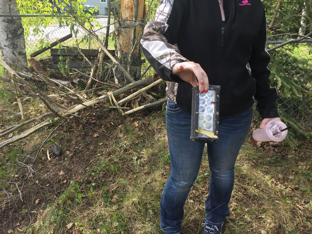 Heather Louison holds up part of a vehicle she found outside her home Saturday in Eagle River. (Matt Tunseth / Alaska Star)