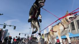 Six former champions among 58 mushers signed up for 2020 Iditarod Trail Sled Dog Race