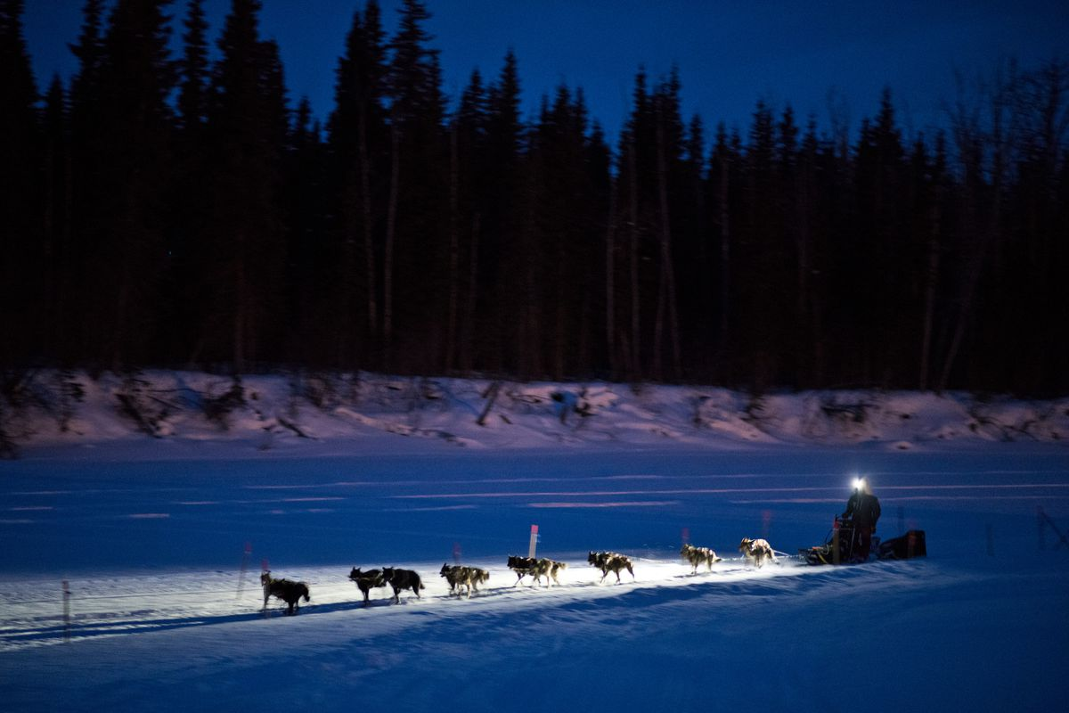 Lance Mackey arrives in Nikolai in the evening during the Iditarod Trail Sled Dog Race on March 5, 2019. (Marc Lester / ADN)