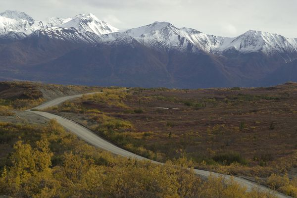Fall foliage surrounds a stretch of the Denali Highway in September 15, 2002. (Bradly J. Boner/Anchorage Daily News)