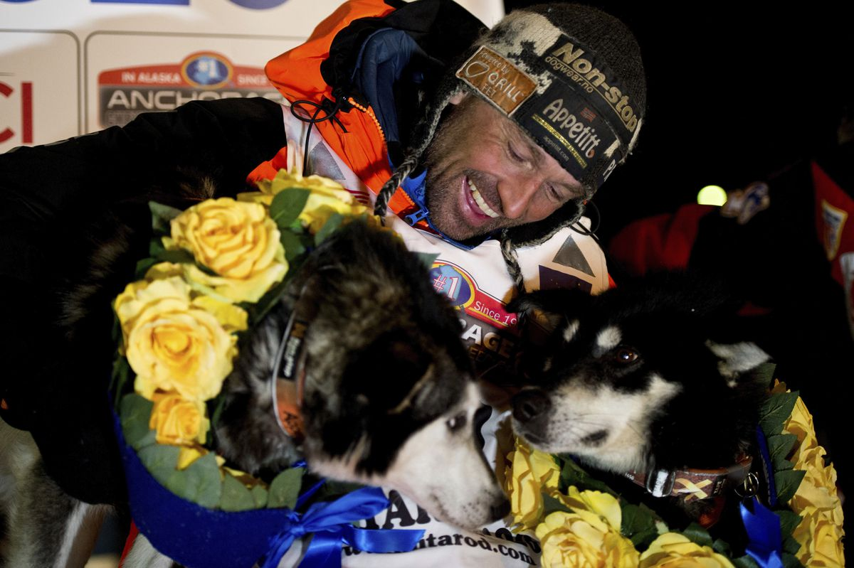 Thomas Waerner of Norway hugs his lead dogs after reaching the Iditarod finish line on March 17. (Marc Lester / ADN)