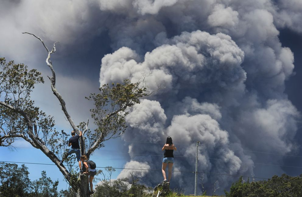 Tourists climb trees at the 18th hole of Volcano Golf and Country Club, inside Hawaii Volcanoes National Park, on May 15 to view the plumes of smoke coming from the vent inside Kilauea's Halemaumau Crater. (Photo for The Washington Post by Linda Davidson)
