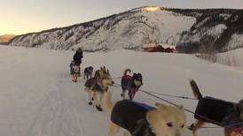 UK photographer vividly brings 2012 Yukon Quest race to life