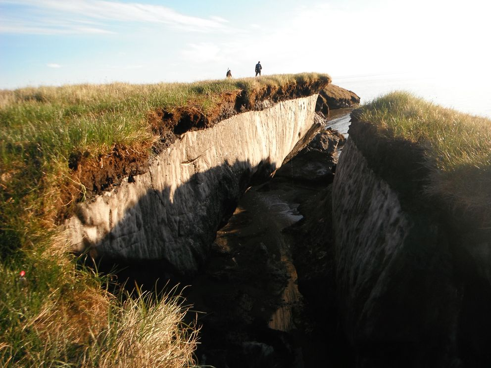Coastal erosion reveals the extent of ice-rich permafrost underlying active layer on the Arctic Coastal Plain in the Teshekpuk Lake Special Area of the National Petroleum Reserve - Alaska. (Brandt Meixell / USGS)