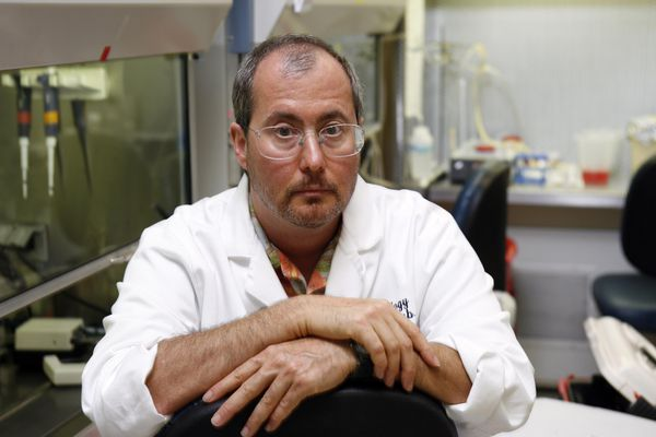 Dr. Ben Barres, professor of neurobiology at Stanford University, in a Palo Alto, Calif., lab on July 11, 2006. Like many scientists, Barres, a professor of neurobiology at Stanford, had strong opinions on the debate over the place of women in science. But he has a singular perspective: until his surgery in the mid-1990s, his name was Barbara, and he was a woman. (Thor Swift/The New York Times file)