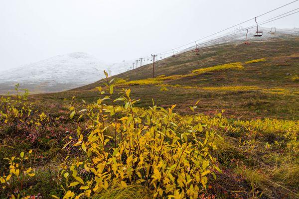 Snow falls at Arctic Valley on Saturday, Sept. 21, 2019. (Loren Holmes / ADN)