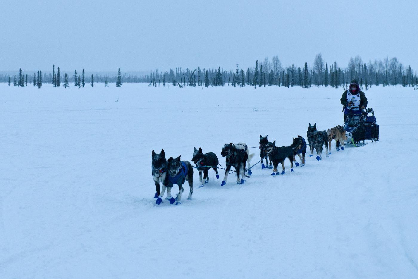 Jessie Royer reaches Deshka Landing to finish Iditarod on March 15, 2021. (Marc Lester / ADN)