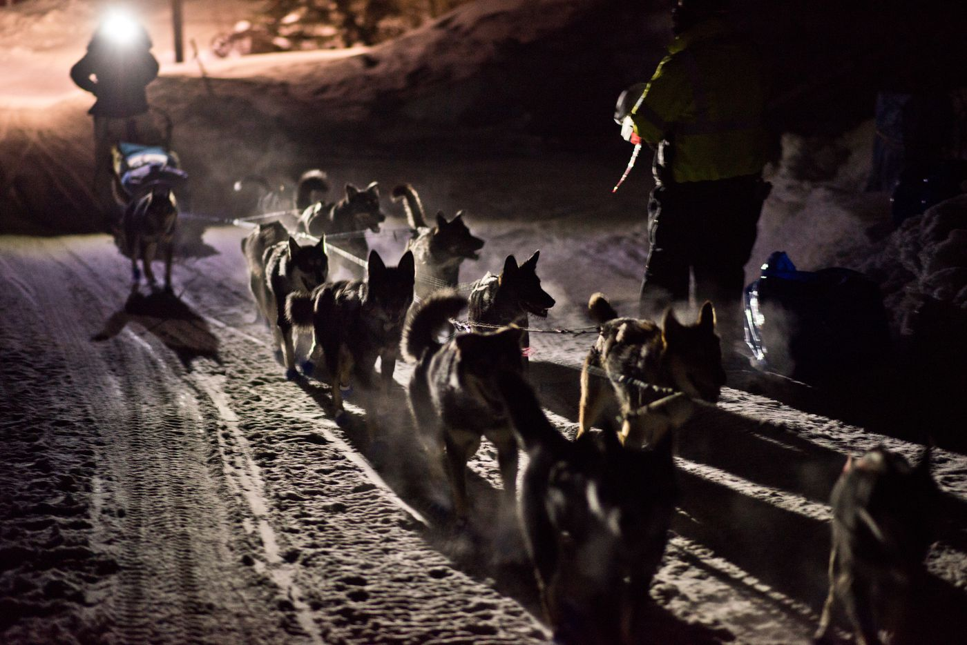 Musher Cody Strathe approaches the checker in Ruby. Iditarod Trail Sled Dog Race mushers reached the Yukon River at the village of Ruby on Friday, March 11, 2016.