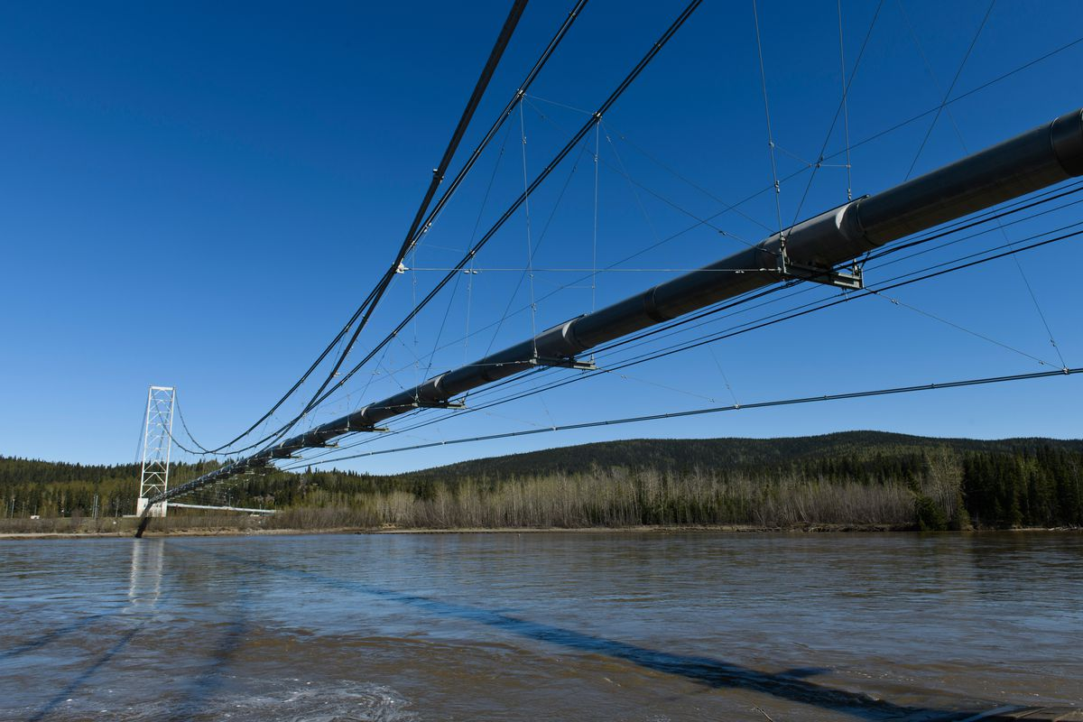 The Trans-Alaska Pipeline crosses the Tanana River with cable stays near Delta Junction. Photographed May 14, 2020. (Marc Lester / ADN)