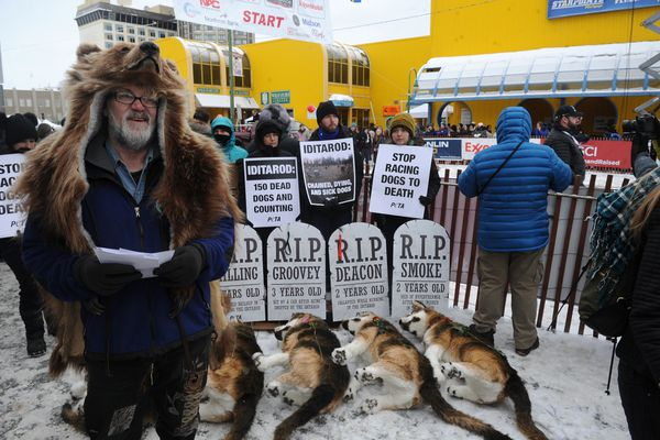 "Richard ""Ziggy"" Zeigler hands out flyers for the Alaska Fur Gallery in front of the PETA protest against the Iditarod at the start line of the 2018 Iditarod Trail Sled Dog Race ceremonial start in downtown Anchorage, AK on Saturday, March 3, 2018. (Bob Hallinen / ADN)"