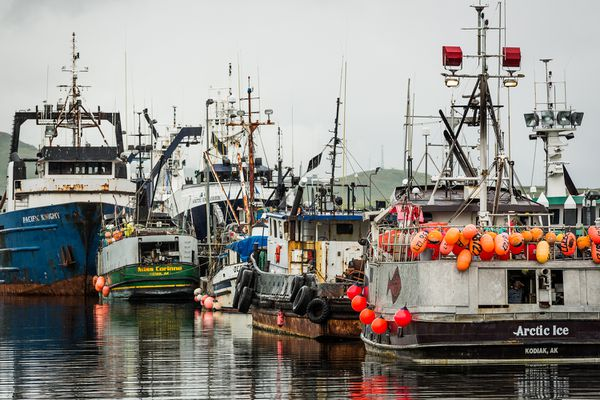 Commercial fishing boats in the port of Dutch Harbor. A new proposal from the National Marine Fisheries Service aims to combat illegal fishing and seafood fraud by making it easier to trace where fish came from.