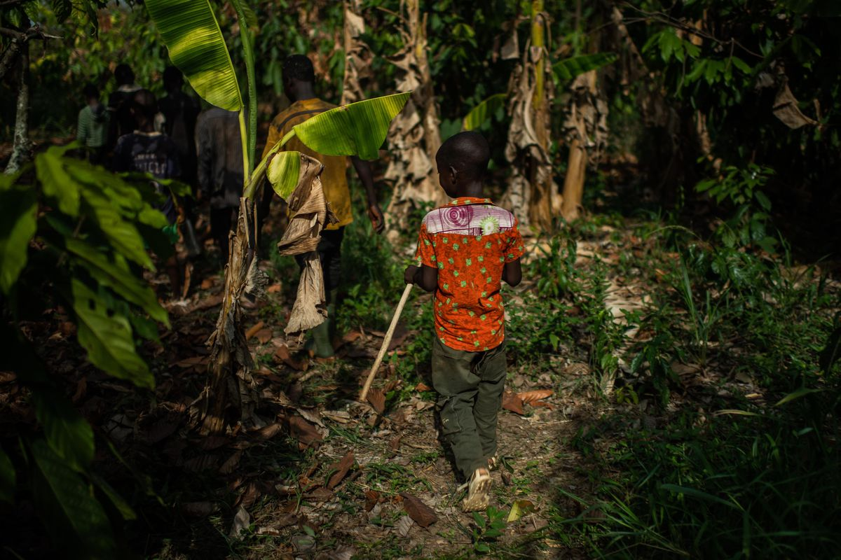 A young boy from Burkina Faso follows other children as they leave the cocoa farm where they work. (Washington Post photo by Salwan Georges)