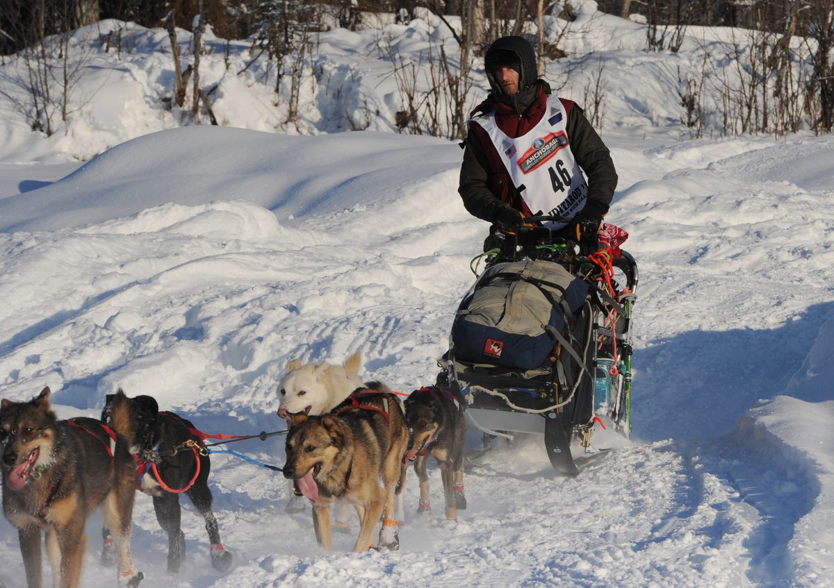 Nic Petit drives his dog team onto the Susitna River after the restart in Willow on Sunday. (Bill Roth / ADN)