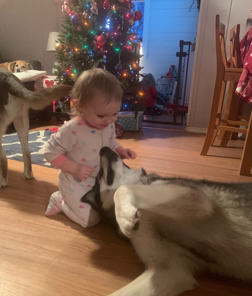 Leah Sartz plays with Aliy after their reunion, Dec. 21, 2019. (photo courtesy Annie Sartz)