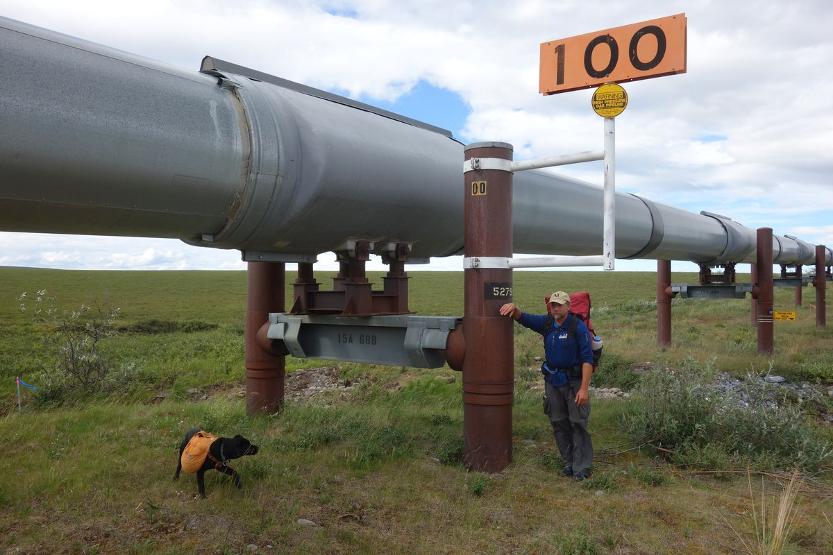 Ned Rozell at trans-Alaska pipeline Mile 100, meaning that many miles remain to Pump Station One near Prudhoe Bay. (Eric Troyer)