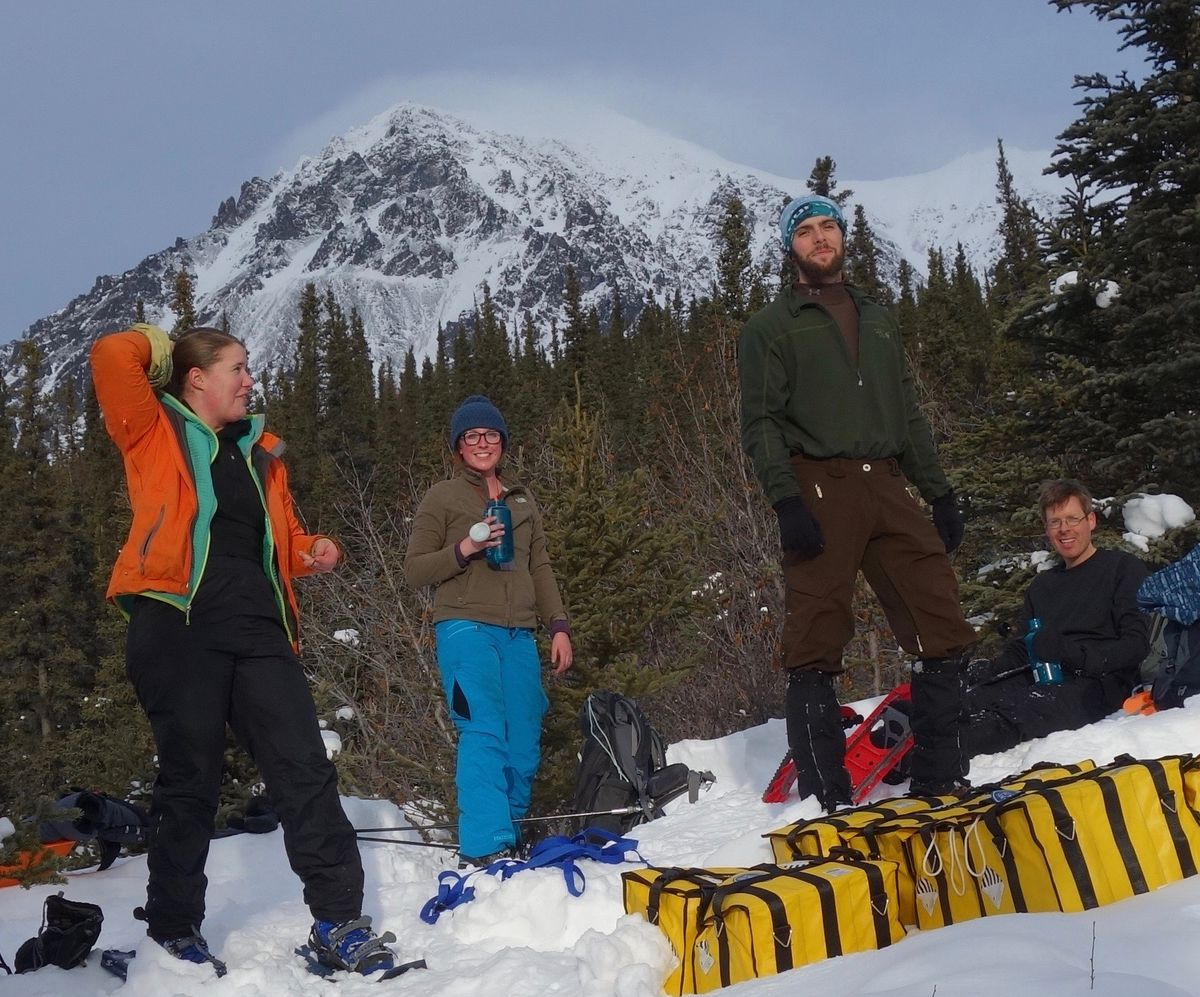 With Panorama Mountain in the background, from left, Lynn Kaluzienski, Elizabeth Berg, Cole Richards and Carl Tape take a break from stomping out a 1-kilometer snowshoe line across the Denali Fault near Cantwell. Photo by Ned Rozell.