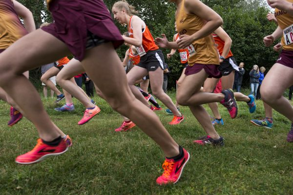 Runners in the first leg of the girls race leave the starting line. West and Dimond cross country running teams ran relay races for the painted steel bucket trophy, an annual tradition between the schools, at Kincaid Park on August 14, 2018. (Marc Lester / ADN)