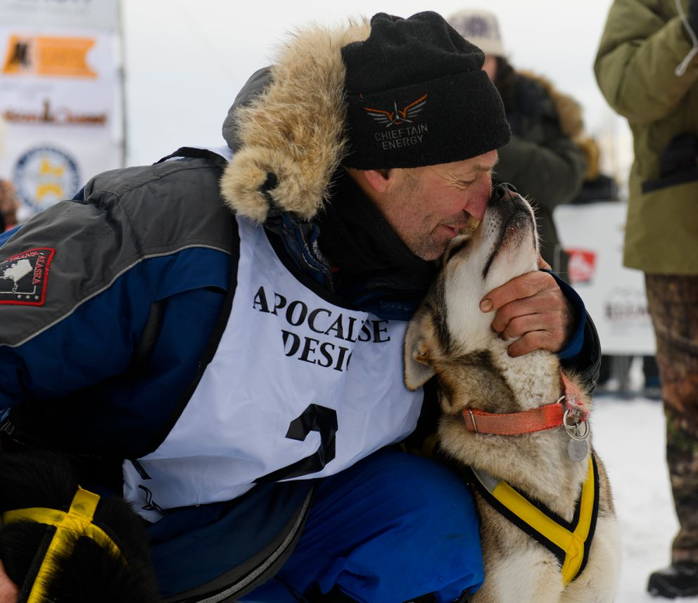 Musher Hans Gatt touches noses with one of his lead dogs. (Marc Lester / ADN)