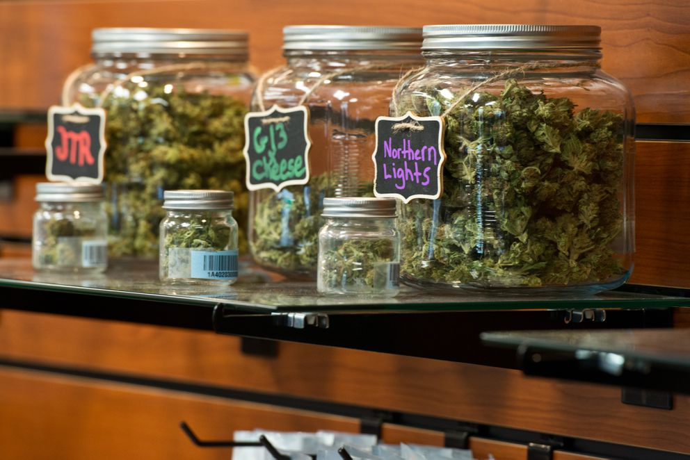 Marijuana is stocked on the shelves of Herbal Outfitters in Valdez. (Marc Lester / ADN)
