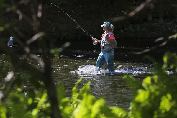 A woman walks in the Russian River in Cooper Landing while fishing on Sunday, June 13, 2021. (Emily Mesner / ADN)