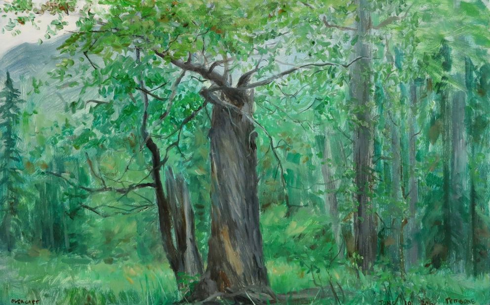 """Overcast"" by artist David Pettibone from his ""Year With a Tree"" series at the Eagle River Nature Center. (Courtesy David Pettibone)"