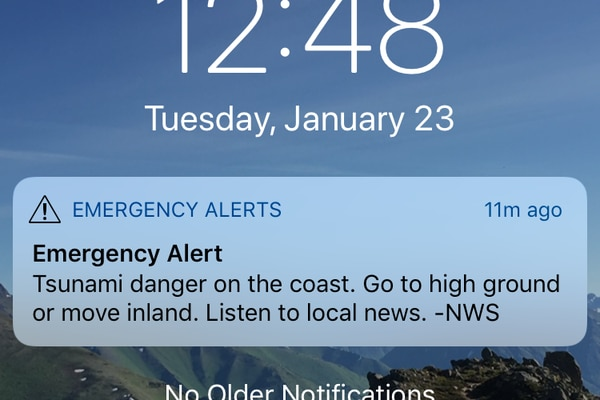 A screenshot showing the smartphone alert many people in Anchorage received. (Tegan Hanlon / ADN)