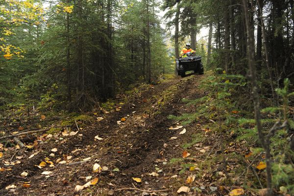 Riders try out the new Jim Creek trail after a ribbon Cutting ceremony for the new 3 mile ATV loops near Butte, Alaska, on Wednesday, September 14, 2016. The new trails are designed for low speed new rider skill building. (Bob Hallinen / Alaska Dispatch News)