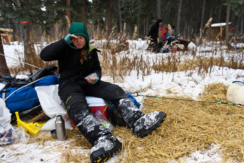 Iditarod rookie Alison Lifka rests in Rohn. Mushers and teams running near the back of the Iditarod race field rested at the Rohn checkpoint on March 5, 2019. (Marc Lester / ADN)