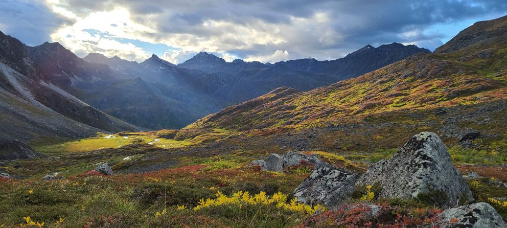 Fall colors are on display in the view from camp along the route between Bomber Glacier and Penny Royal Glacier. (Photo by Kerry Nelson)