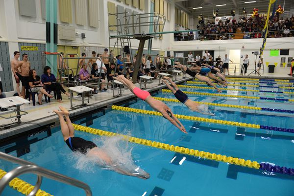 Swimmers from around the region compete at the Cook Inlet Conference swimming championship preliminaries at the Bartlett High pool in Anchorage, AK on Friday Oct. 30, 2015.